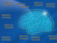 脳と腸はつながっていて、砂糖や動物性食品は脳を壊すんです!